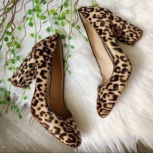 NEW | Sam Edelman Stillson Leopard Calf-Hair Pumps